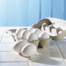 Rodzaje białka w odżywkach